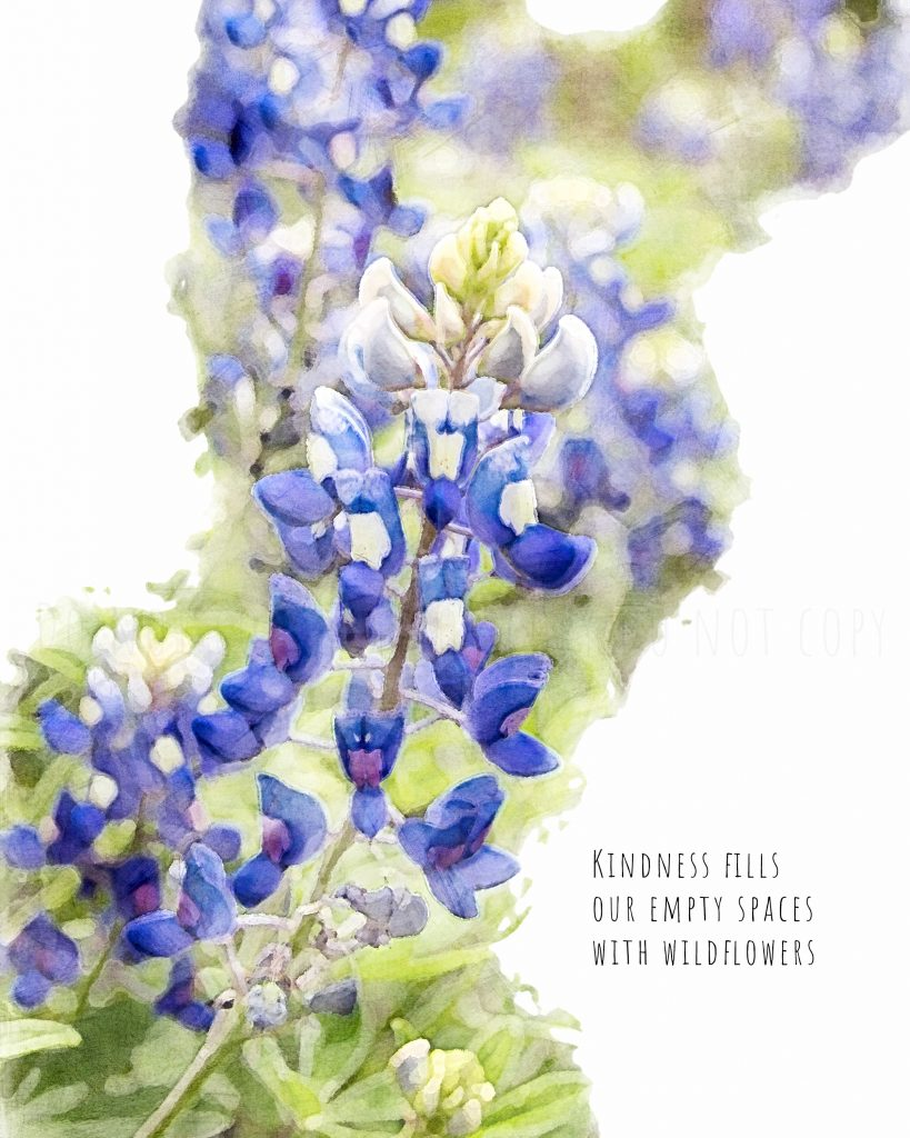 """Bluebonnet watercolor with kindness quote that reads: """"Kindness fills our empty spaces with wildflowers"""""""