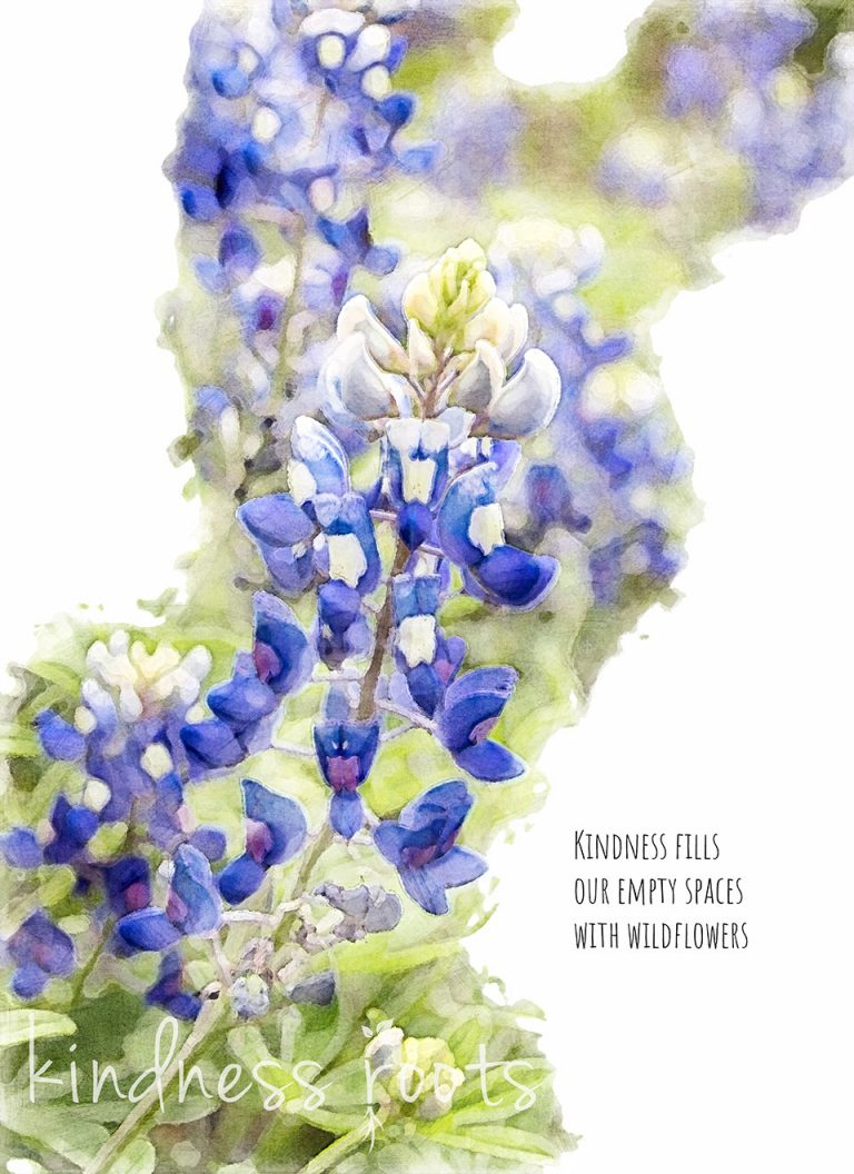 """Watercolor painting of a Texas Bluebonnet with kindness quote that reads, """"Kindness fills our empty spaces with wildflowers"""""""