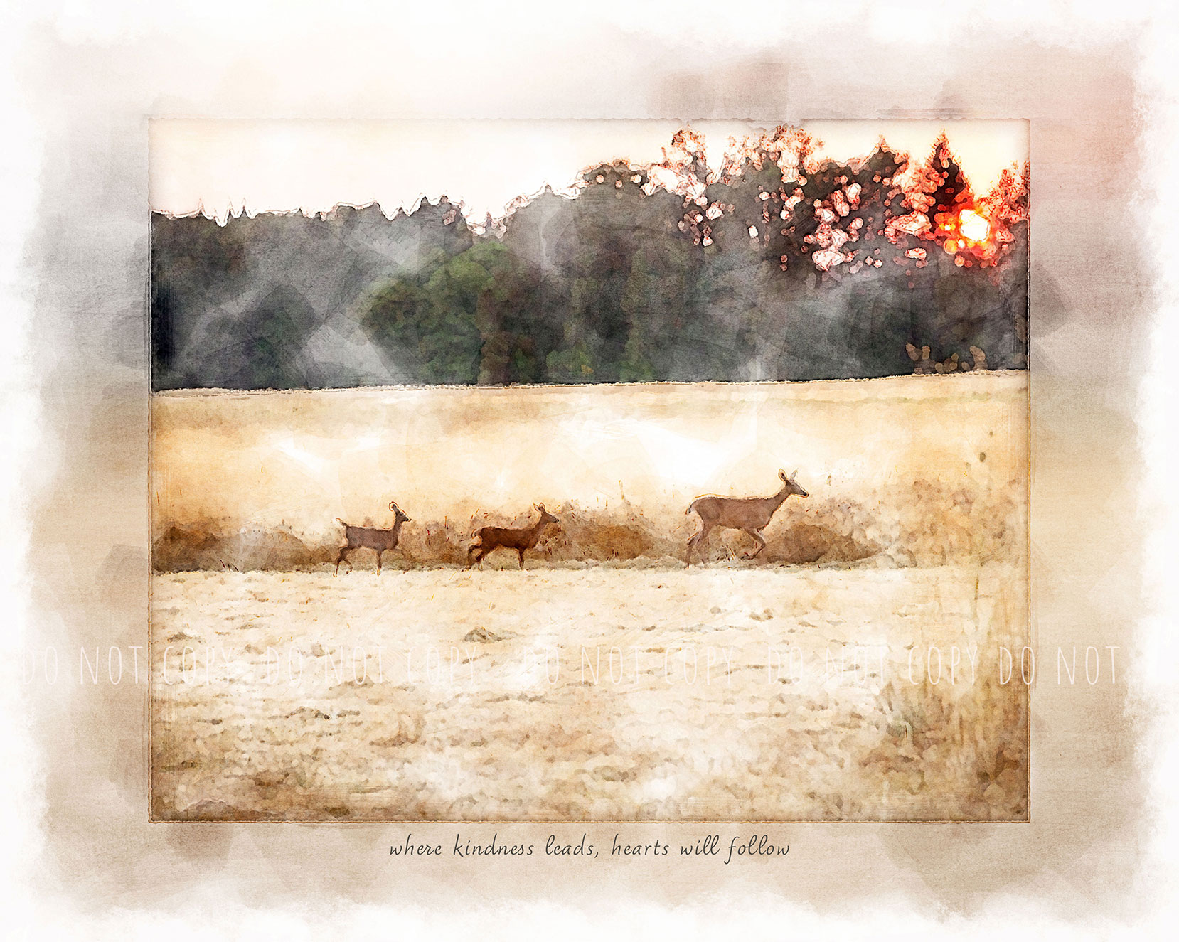 """Watercolor of a doe leads her two fawns across a golden filed with the sunset behind them with quote, """"where kindness leads, hearts will follow"""""""