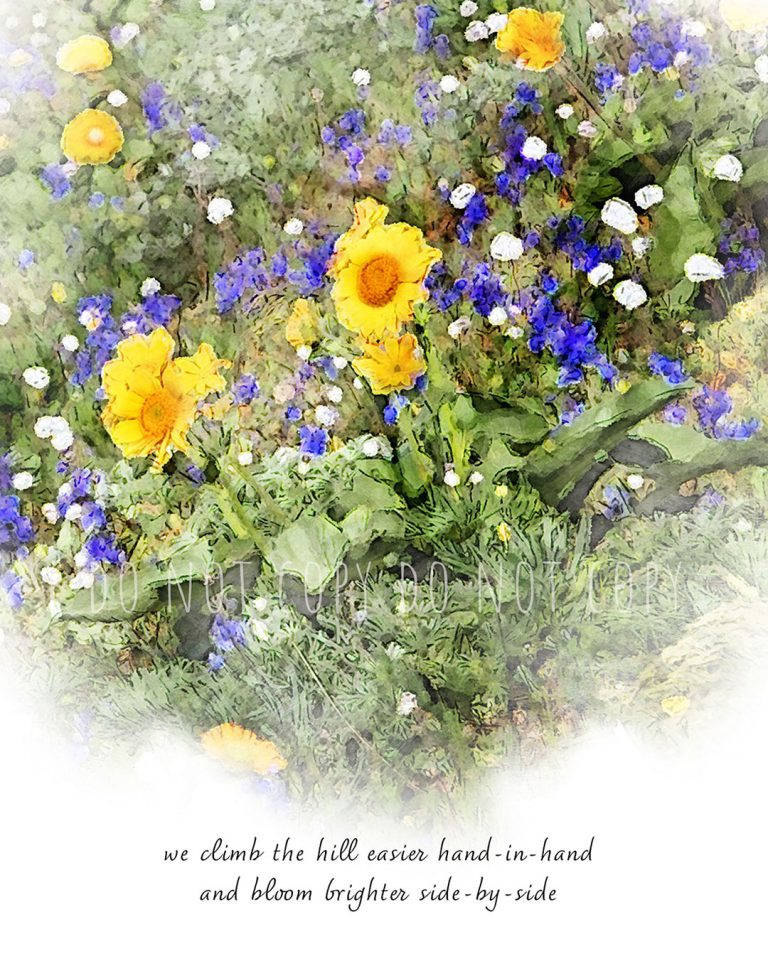 """Gold and blue wildflowers cover a hill with inspirational text """"we climb the hill easier hand-in-hand and bloom brighter side-by-side"""