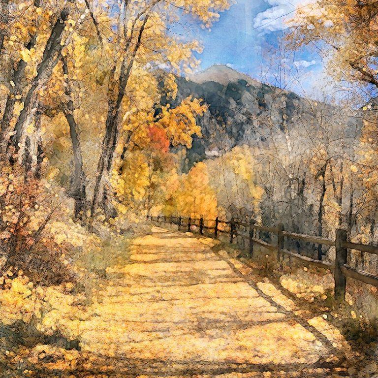 Golden Aspens line a path in Telluride, Colorado